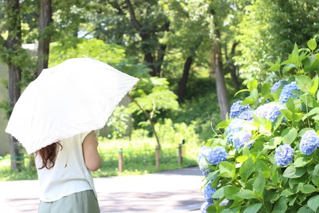 日傘 色褪せ 復活
